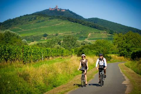 VéloRoute du Vignoble - Alsace
