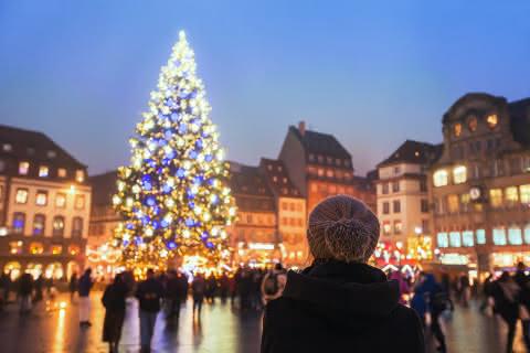 Grand Sapin de Noël - Strasbourg