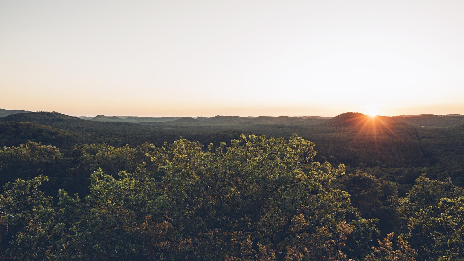 Coucher de soleil - Vosges du Nord