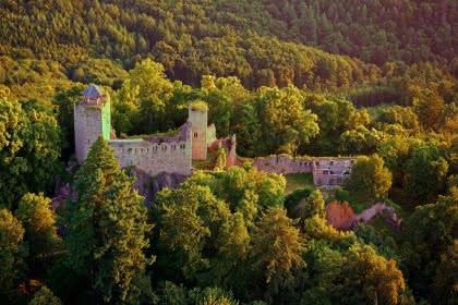 Château du Bernstein © Studio Pygmalion