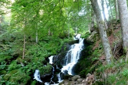 Cascade de la Serva. Crédit photo :  Office de tourisme de la vallée de la Bruche