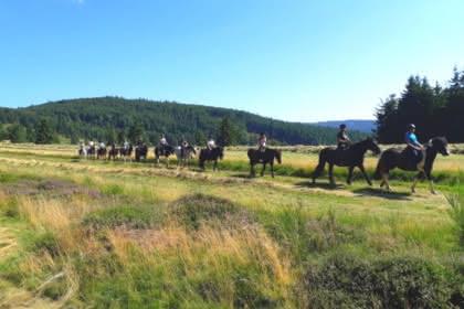 Balades à cheval avec Cheval Alsace