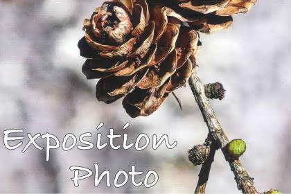 ASSOCIATION LE PHOT'OEIL