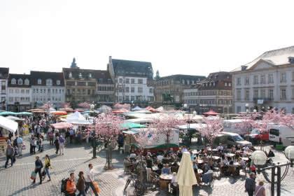 Stadt Landau