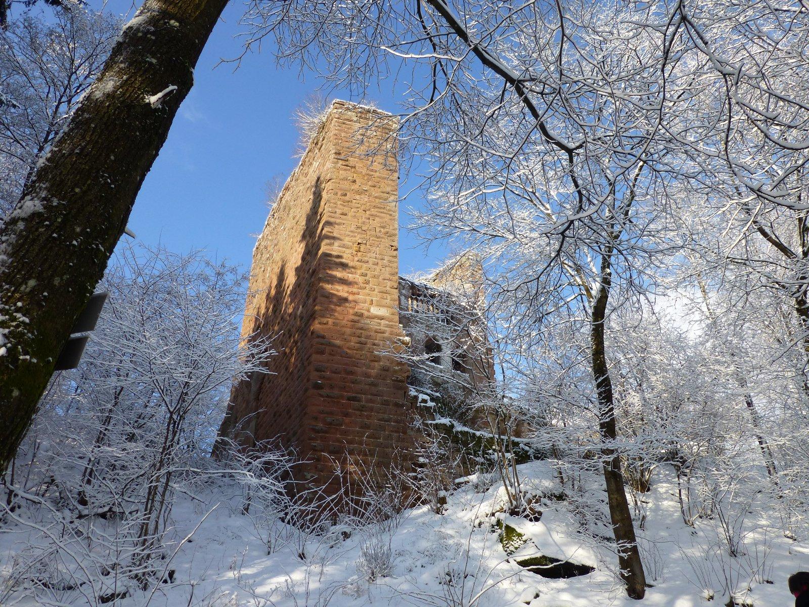 Château de la Wasenbourg, sur le GR53, Niederbronn-les-Bains, Alsace