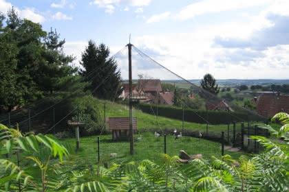 Enclos à cigognes, Oberbronn, Alsace