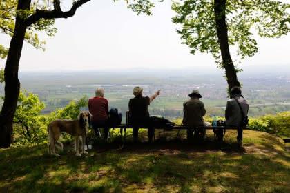 Séjour nature et découverte, Alsace, admirez les paysages que vous offrent les Vosges du Nord