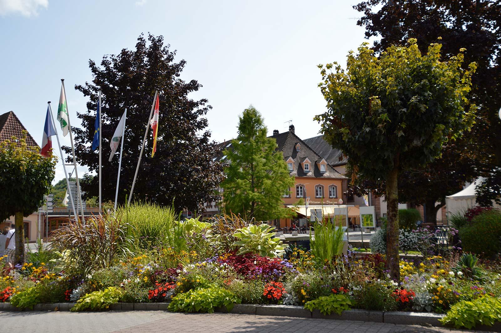 Découvertes de deux communes labellisées 'Station Verte', Alsace