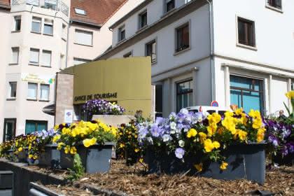 Exposition de peintures, Niederbronn-les-Bains, Alsace