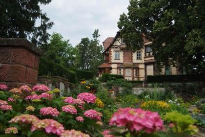 Tourisme Obernai