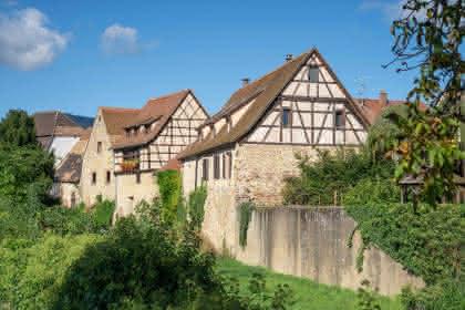 Bergheim - Crédit photo : Christophe Dumoulin - Office de Tourisme du Pays de Ribeauvillé et Riquewihr
