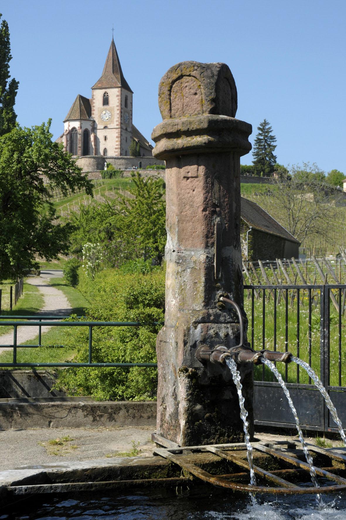 Hunawihr - Crédit photo : Christophe Dumoulin - Office de Tourisme du Pays de Ribeauvillé et Riquewihr