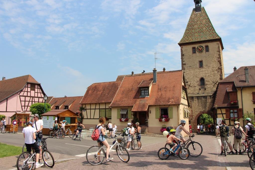 slow Up Alsace 2014 Châtenois-Bergheim-Sélestat © ADT67-C.FLEITH 086