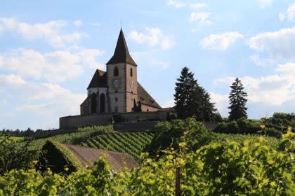 ©Office de tourisme du Pays de Ribeauvillé et Riquewihr