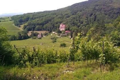 Domaine du Reichenberg