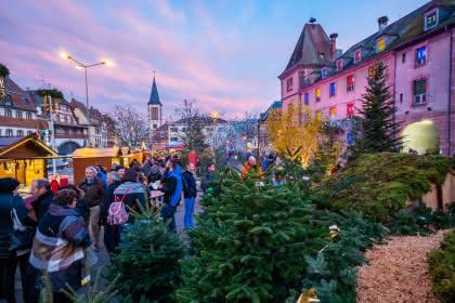 calendrier géant de l'avent - Munster - Alsace - Marchés de Noël