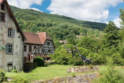 Vivarium du moulin à Lautenbach Zell © Grégory Tachet