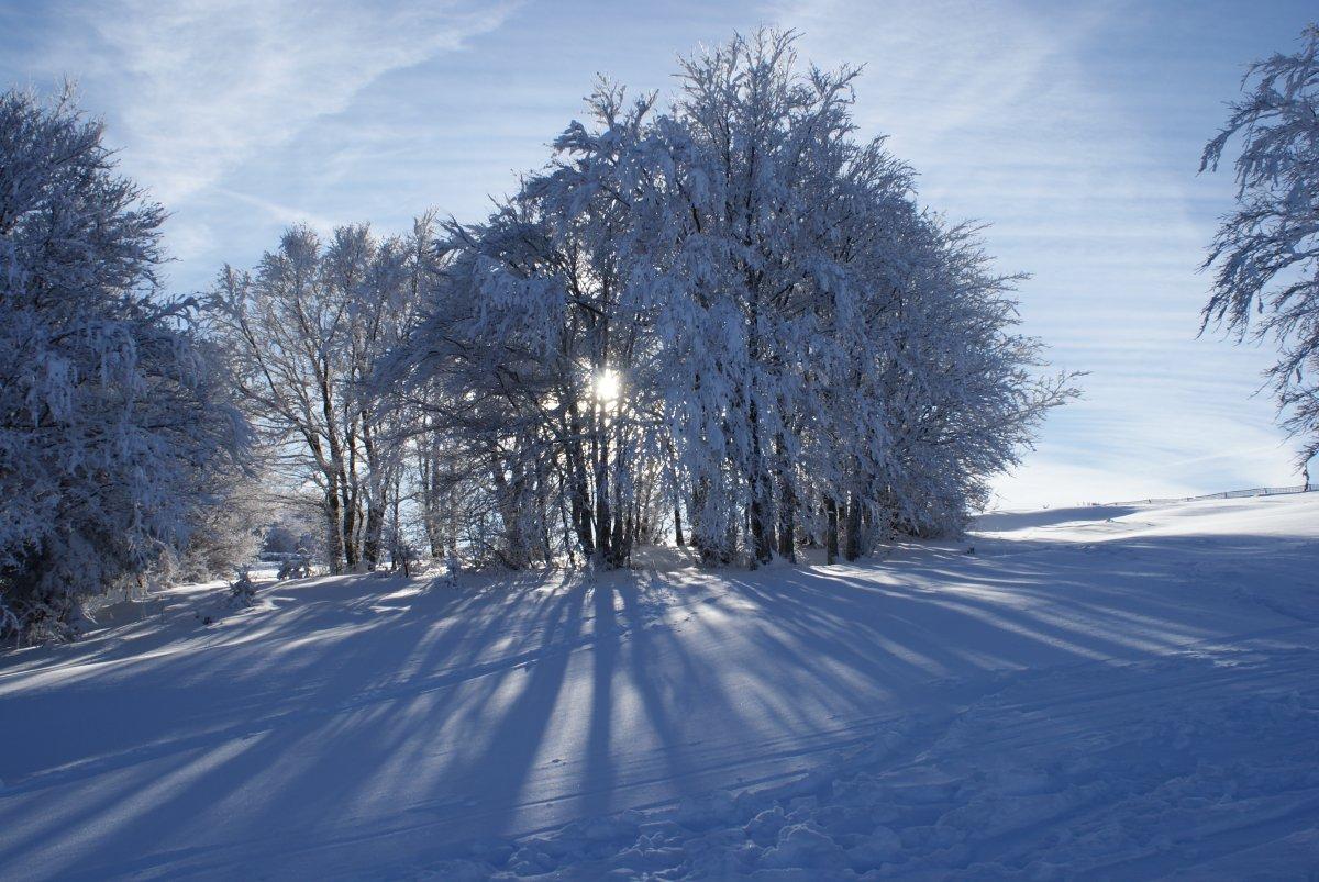 Initiation aux raquettes à neige et tour du Marksteinkopf - crédits K. Champagneur