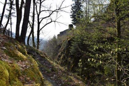 ©Hautes Vosges d'Alsace