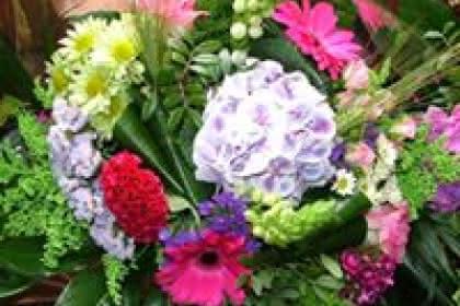 Passionnément Fleurs