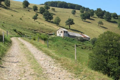 Le Thannerhubel sous la neige©dietrich_club_vosgien