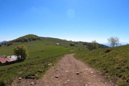 Copie d'écran Résilience Trail Alsace