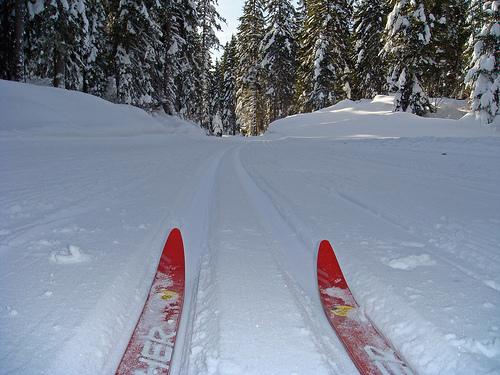 Skilanglauf in Winkel