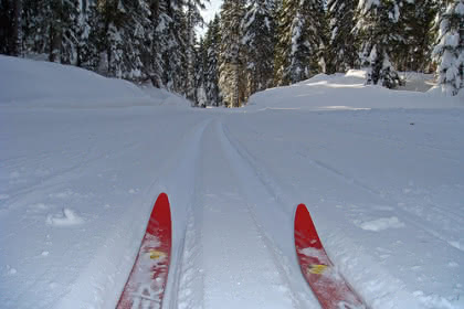 Winkel cross-country skiing