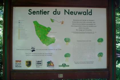 Sentier du Neuwald,  Wolfersdorf