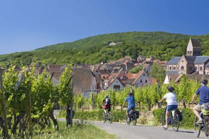 Alsa Cyclo Tours