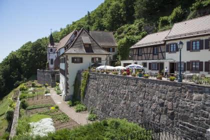 Schauenberg, Pfaffenheim, Pays de Rouffach, Vignobles et Châteaux, Haut-Rhin, Alsace