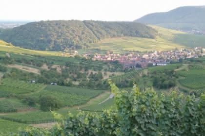 Strangenberg, Westhalten, Pays de Rouffach, Vignobles et Châteaux, Haut-Rhin, Alsace