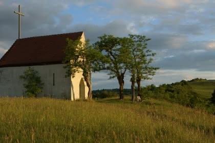 Vignoble et collines sèches, Pays de Rouffach, Vignobles et Châteaux, Haut-Rhin, Alsace