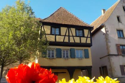 Rouffach, Canton de Rouffach, Haut-Rhin, Alsace (Patrice André - Ville de Rouffach)