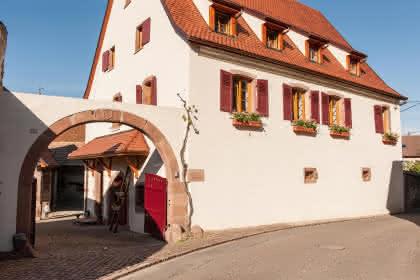 Chambres d'hôtes de M. Guillaume Hannauer, Pfaffenheim, Pays de Rouffach, Vignobles et Châteaux, Haut-Rhin, Alsace