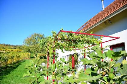 Gîte des Grands Crus, Rouffach, Pays de Rouffach, Vignobles et Châteaux, Haut-Rhin, Alsace