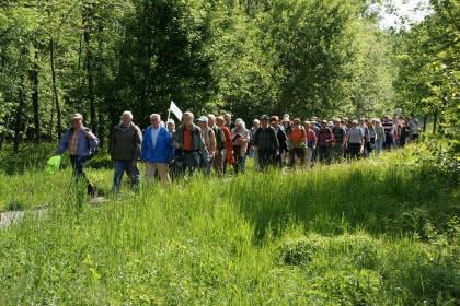 Marche populaire, Pfaffenheim, Pays de Rouffach, Vignobles et Châteaux, Haut-Rhin, Alsace