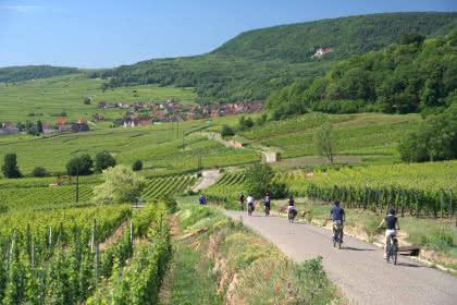 Vélo gourmand Alsa Cyclo Tours