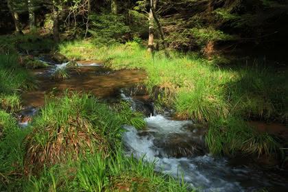 Vue satellite du circuit de la Mossig