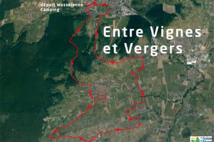 Vue satellite du circuit entre vignes et vergers