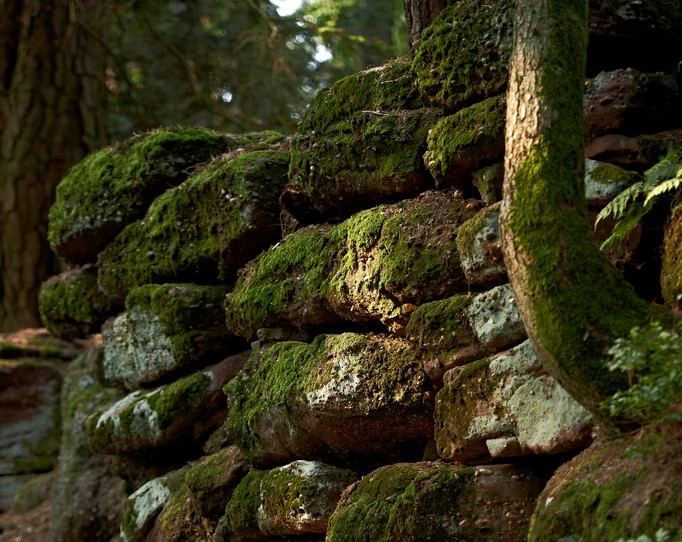 Le Mur Païen - (c)S.Spach