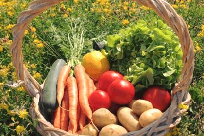 ©les légumesdumoulin