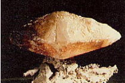 Cristal de calcite, Aachen, Rheinland<br>Photo: Bernard Braesch, Archives du musée, ULP