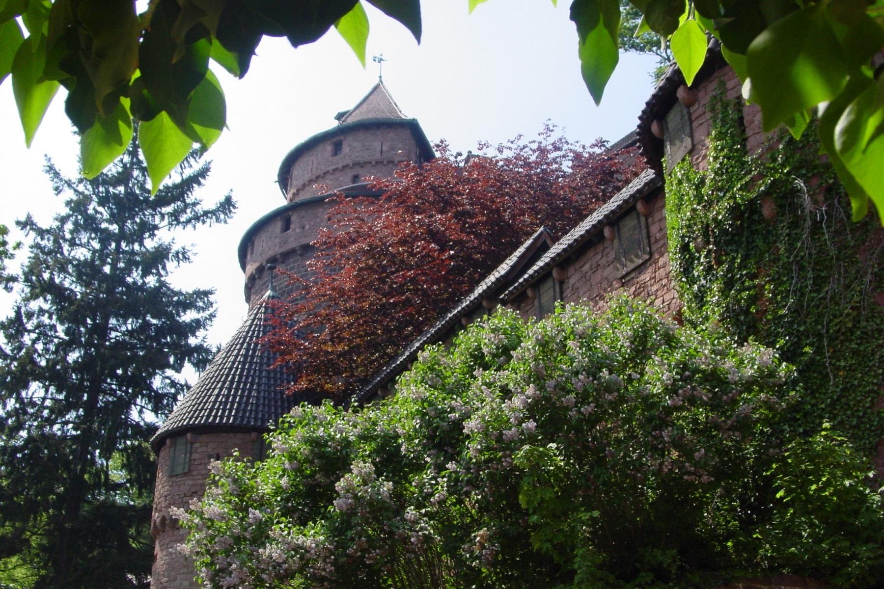 ©Château du Haut-Koenigsbourg