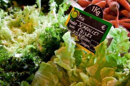 © Madeos images – www.madeos.com